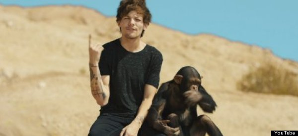 Literally, WHAT Is Going On In One Direction's New Music Video?