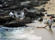 How One South American Oil Spill Is Devastating Local Fisheries And Wildlife