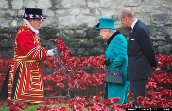queen poppies