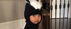 NORTH WEST SKUNK