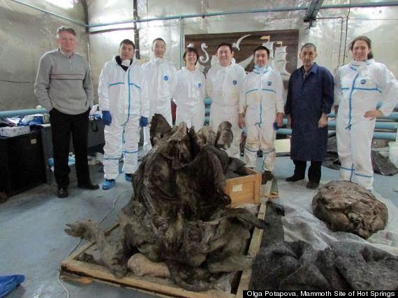 siberian mummy