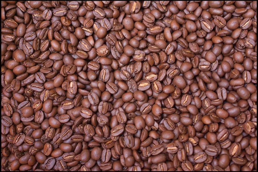 coffee jude b