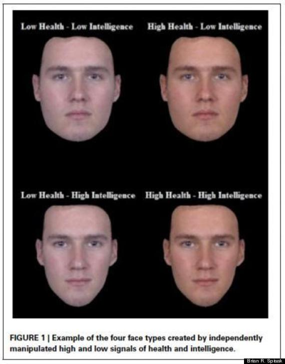 four face types