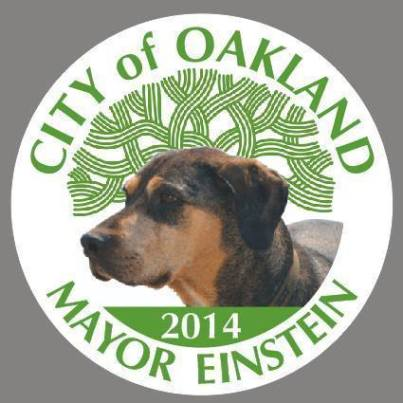 einstein for oakland