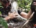 'Eaten Alive' On Discovery Will Show A Guy Get Eaten By Anaconda