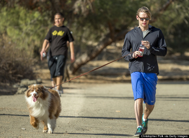 runyon canyon dog