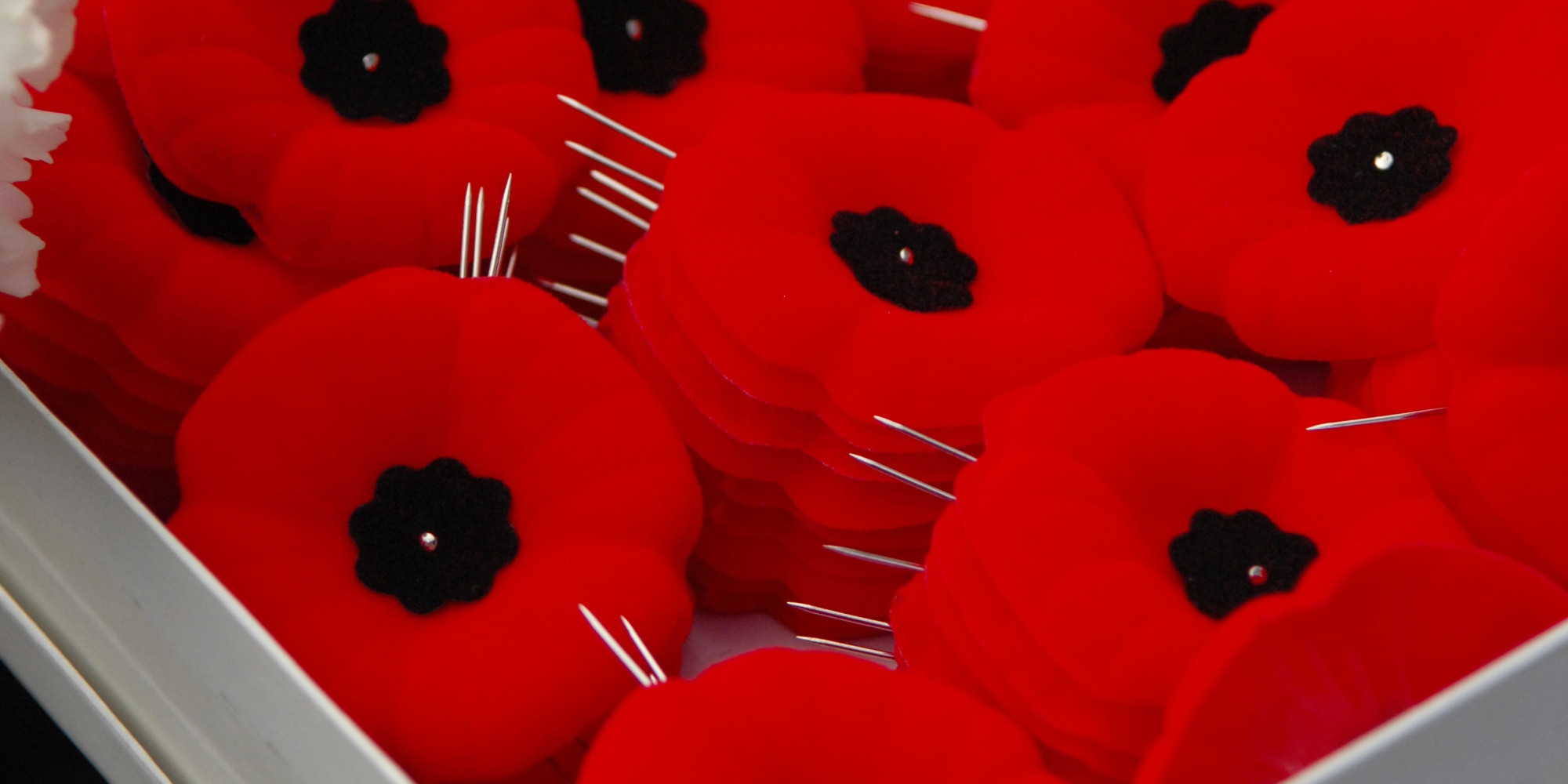 remembrance day 2014  record