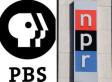 170 Million Strong Support NPR