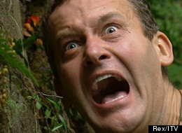 Was This I'm A Celebrity's Best Bushtucker Trial?