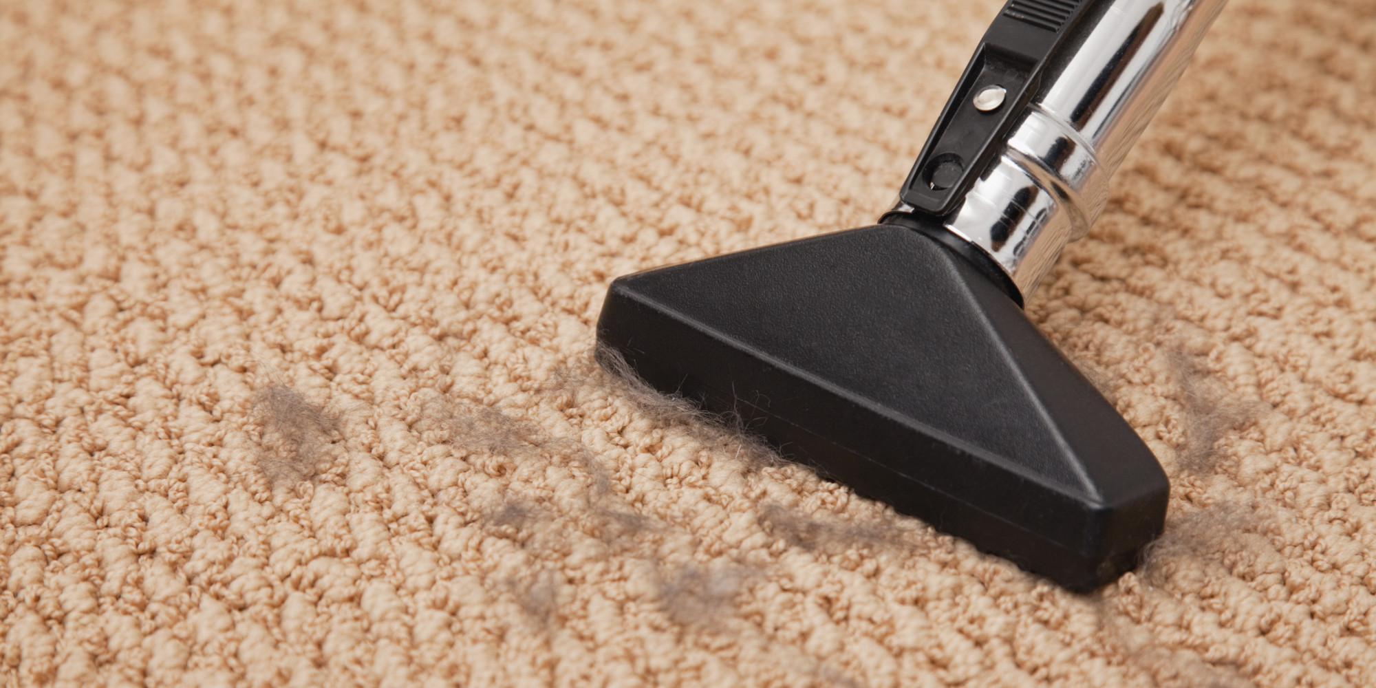 Vacuuming Does Not Count As Carpet Cleaning Seriously