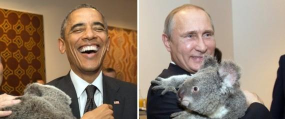 KOALA G20
