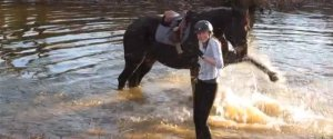 HORSE SPLASHES IN WATER