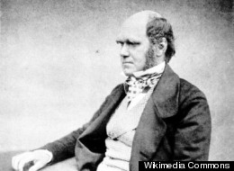 Has 'Darwin's Dilemma' Finally Been Solved?