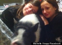Family Forced To Say Goodbye To Pet Pig