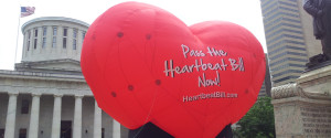 HEARTBEAT BILL OHIO