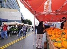 Film School Fights Hollywood Farmers Market
