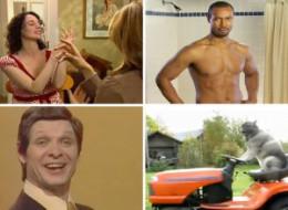 Best Viral Videos 2010