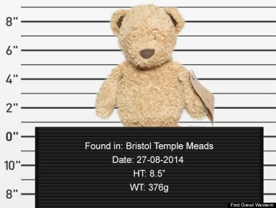 lost teddy bear mugshot