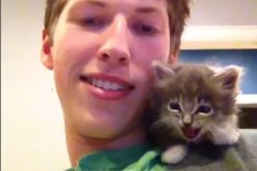 Kitten on boy's shoulder | Pic: YouTube