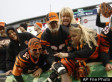 Cincinnati Bengals Sued By Woman Over Drunk Fans Who Injured Her
