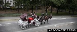 HORSECARRIAGE NEW YORK CITY
