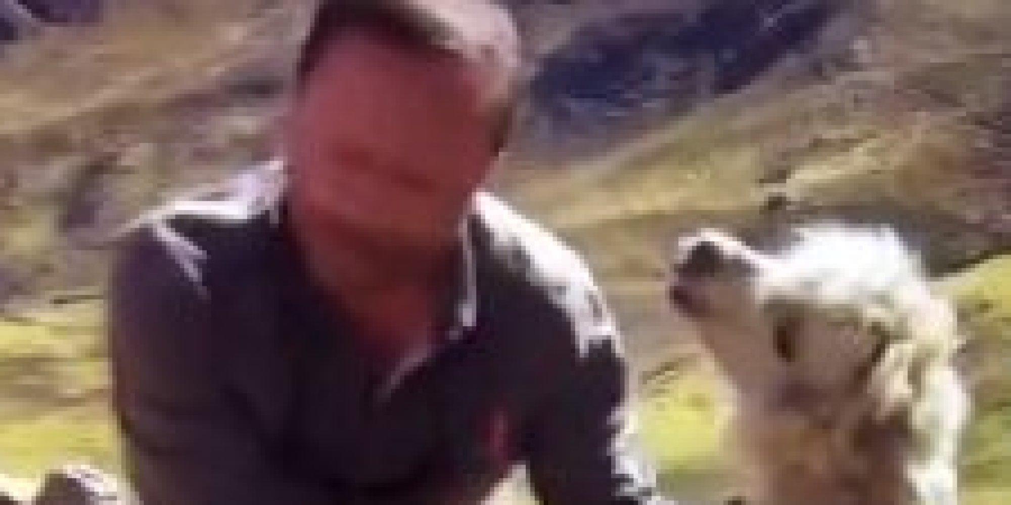 Vid o rendez vous en terre inconnue arthur se fait cracher dessus par un lama - Arthur motorkap rendez vous ...