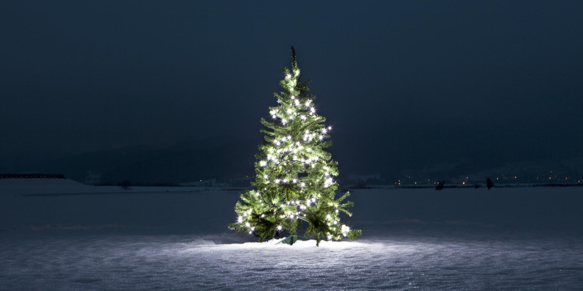 O CHRISTMAS TREE Facebook