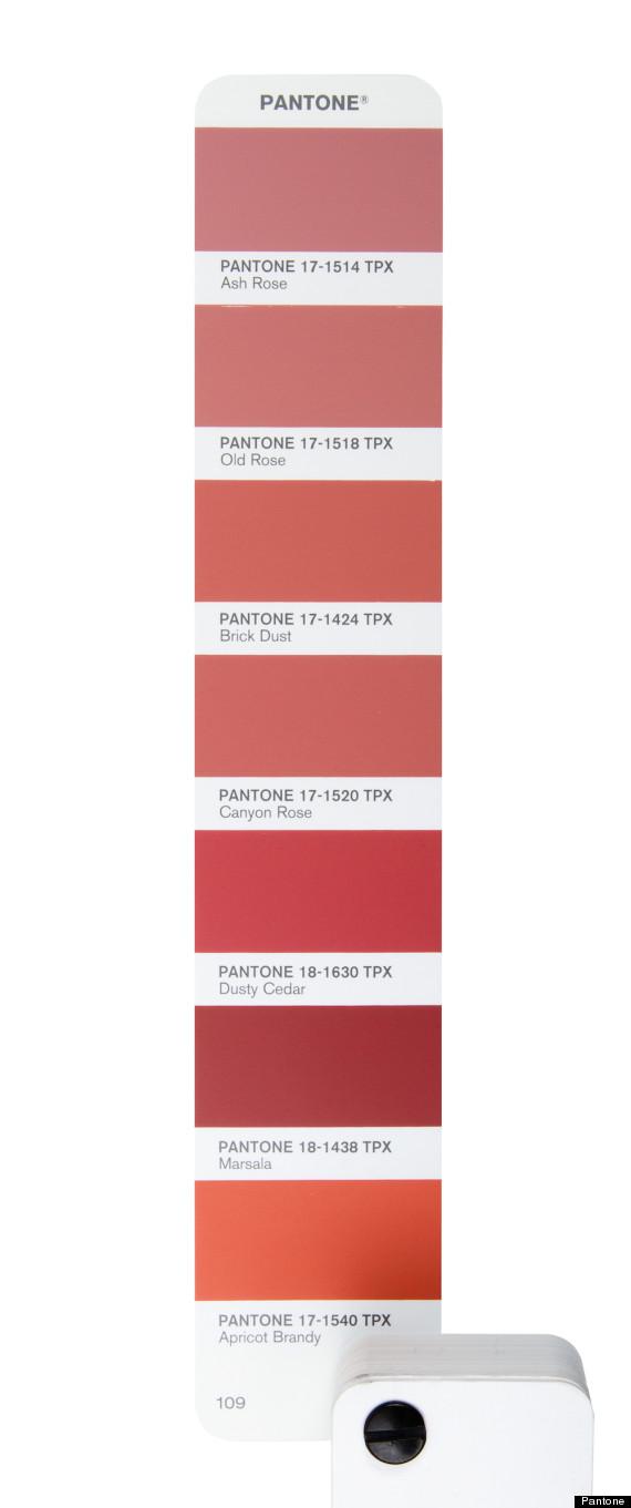 Marsala Color Paint