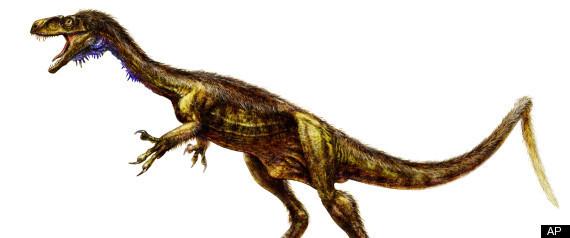 Eodromaeus Dinosaur