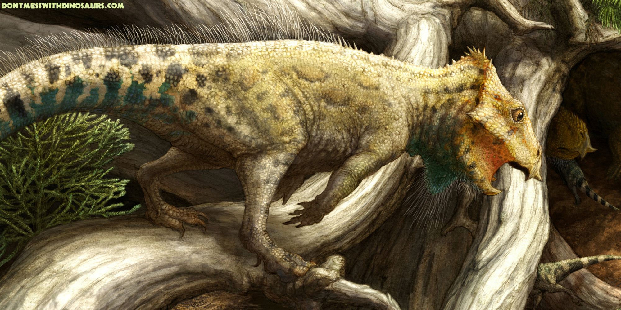Horned Dinosaur Discovered In Montana Had One Super