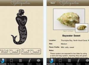 Oysterpedia Iphone App