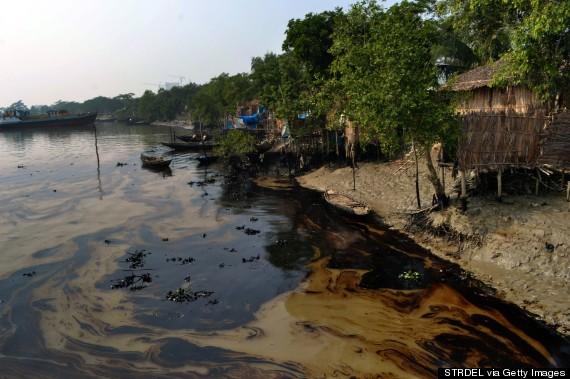 oil spill bangladesh