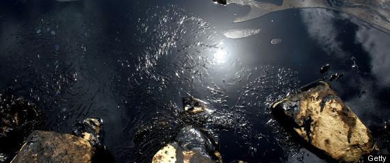 2008 OIL SPILL