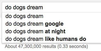 dogs dream google