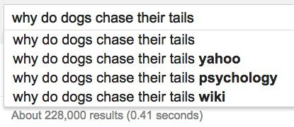 dogs tails google