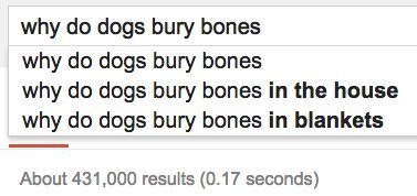 dogs bones google