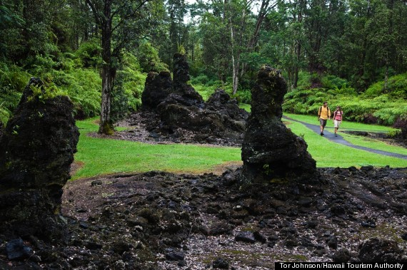 lava tree forest