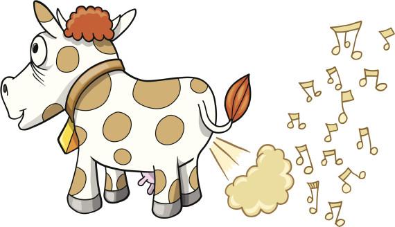 vaca soltando pum