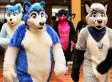 Furries Set The Record Straight: There's Nothing To Be Afraid Of