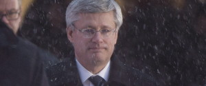 STEPHEN HARPER SNOW