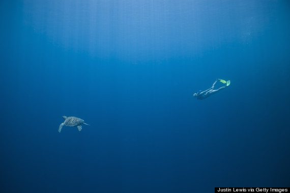 free diving ocean