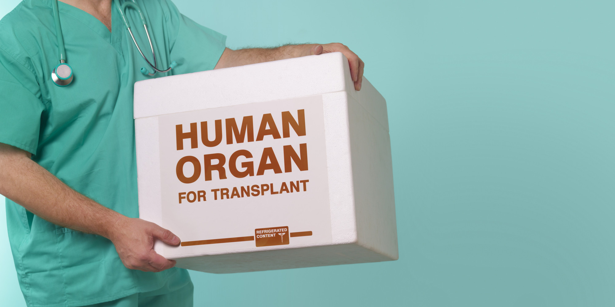 organ donors essays Here is your short essay on organ donation organ donation is the act of donating an organ by a person so that it can be transplanted by surgical procedure in the.