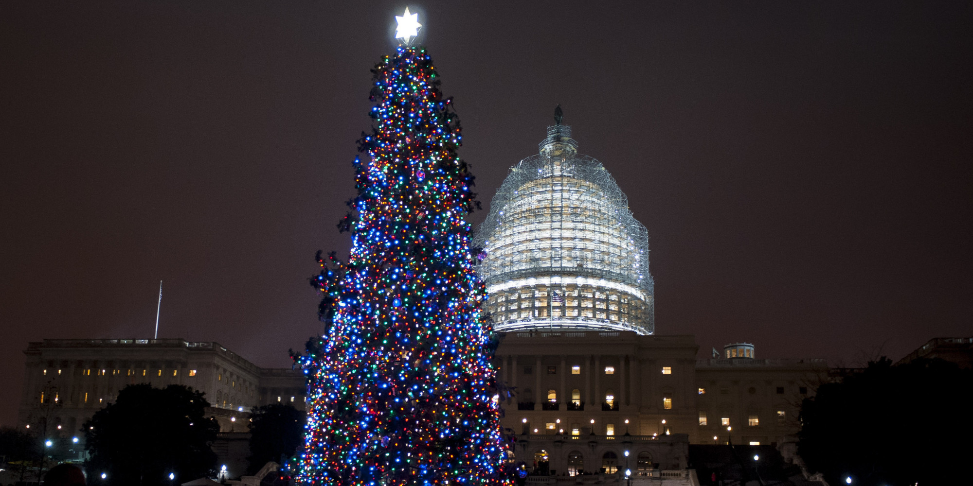 O CAPITOL CHRISTMAS TREE Facebook