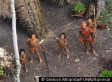 Uncontacted Tribe, One Of The World's Last, Threatened By Illegal Logging In Brazil (PHOTOS)