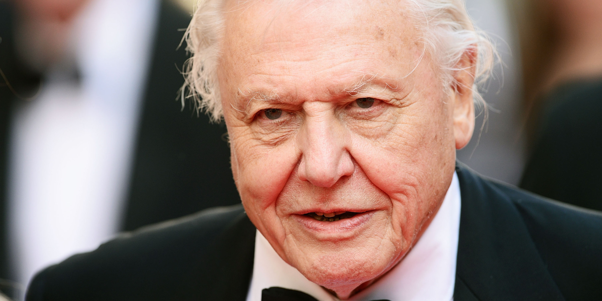 david attenborough achivements