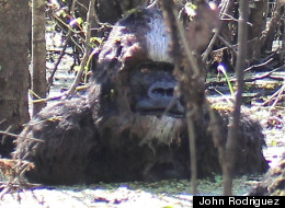 Fisherman Says He Saw Bigfoot Bathing ... And He Sent Us A Picture!