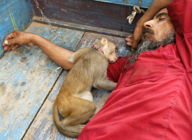 indian sleeping