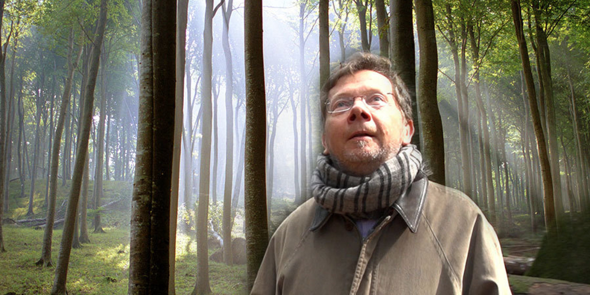 Eckhart Tolles Guide To Finding Peace Through Nature