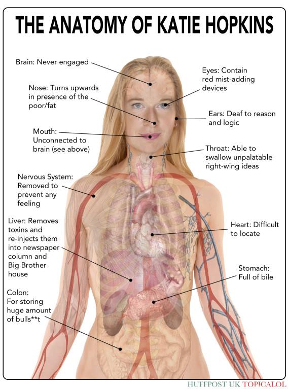 katie hopkins anatomy