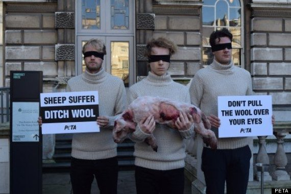 wool protest
